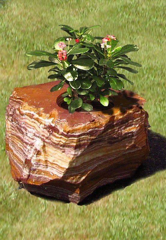 Pflanzensteine