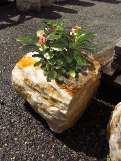 Pflanzenstein Ägäis-Gelb